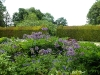 Large Herbaceous border with the distinctive Alliums on show