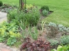 Mixed herbaceous border planted to provide seasonal colour and interest