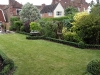 Traditional formal English garden planting, use of structural shrubs and formal Box planting, limited perennials