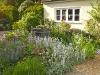 Classic English planting scheme