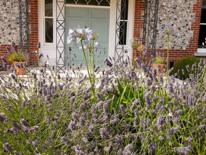 Garden design themes and styles portfolio wildlife new for Garden design hampshire