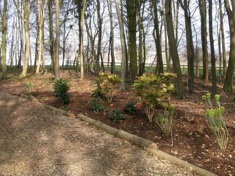 Garden Design Themes and Styles Portfolio Woodland New