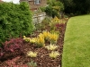 Combination of both shrub and perrenial planting