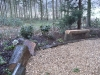 Log seat sections within woodland border
